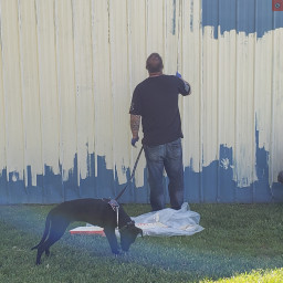 Officer Stewart and K-9 Tattoo painting a wall